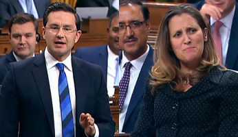 Poilievre Freeland